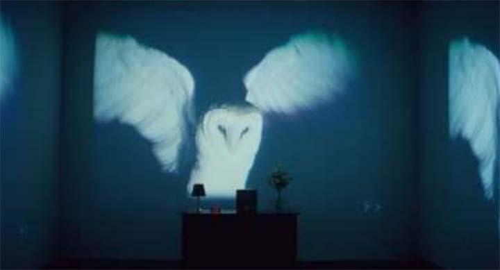 Appels à contribution. La nuit à la croisée des arts et des cultures : perceptions, imaginaires, représentations